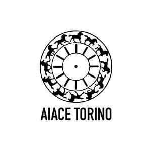 Aiace Summer School